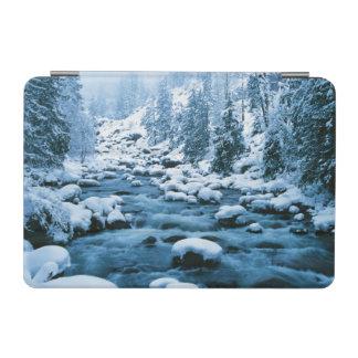 WA, Wenatchee National Forest, Cascade iPad Mini Cover