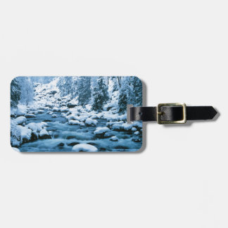 WA, Wenatchee National Forest, Cascade Luggage Tag
