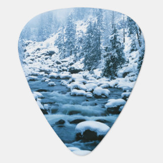 WA, Wenatchee National Forest, Cascade Plectrum