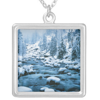 WA, Wenatchee National Forest, Cascade Silver Plated Necklace