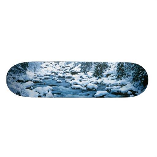 WA, Wenatchee National Forest, Cascade Skate Deck