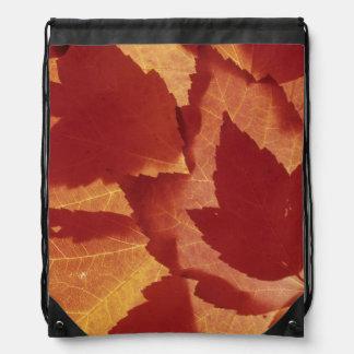 WA, Wenatchee National Forest, Maple leaf Drawstring Bag