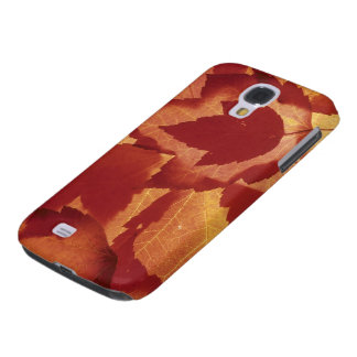 WA, Wenatchee National Forest, Maple leaf Galaxy S4 Case