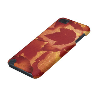 WA, Wenatchee National Forest, Maple leaf iPod Touch (5th Generation) Covers