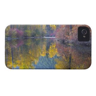 WA, Wenatchee National Forest, Whitepine Creek, Case-Mate iPhone 4 Case