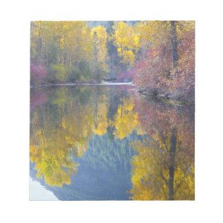 WA, Wenatchee National Forest, Whitepine Creek, Notepad