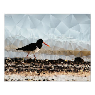Wader - Art on Canvas Poster