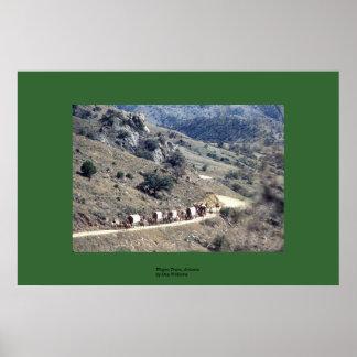 Wagon Train, Arizona Poster