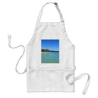 Waikiki Beach and Diamond Head Crater, Hawaii Standard Apron