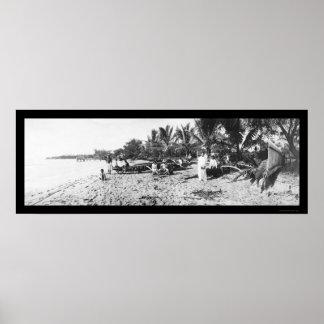 Waikiki Beach Hawaii Photo 1902 Poster