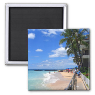 Waikiki Beach, Oahu, Hawaii Magnet