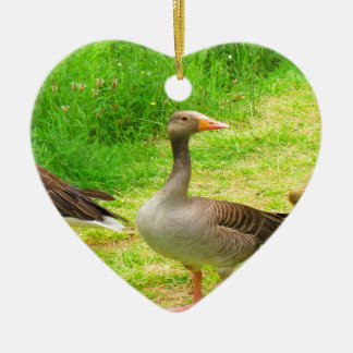 wait for you greylag goose anser wild animal bird christmas ornament