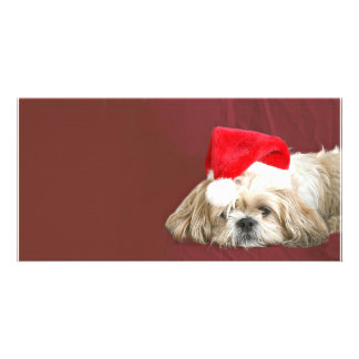 Waiting for Santa Custom Photo Card