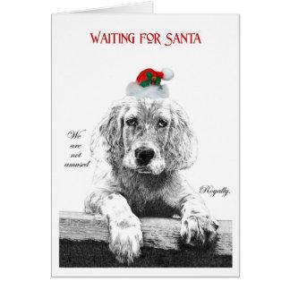 Waiting for Santa IV Greeting Card
