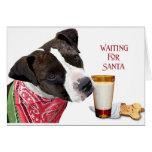 Waiting for Santa VI