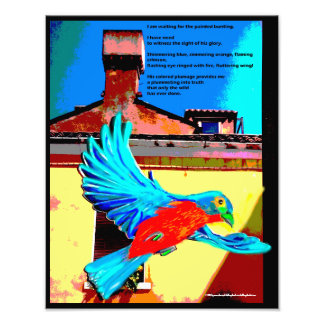 Waiting for the painted bunting photo print