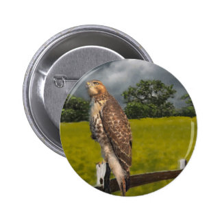 Waiting for the Storm - Red tail Hawk 6 Cm Round Badge