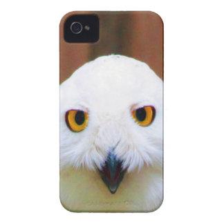 Waiting for you my love cute bird eye iPhone 4 covers