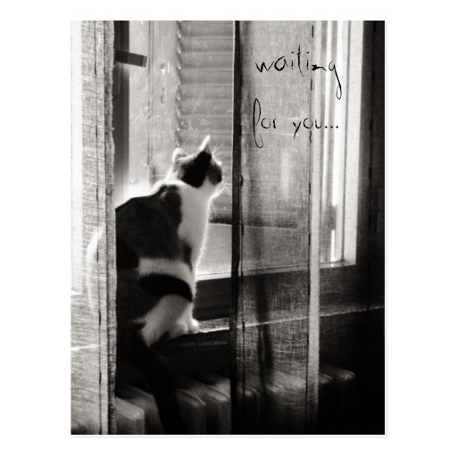 Waiting for you - Postcard