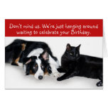 Waiting for your birthday! greeting card