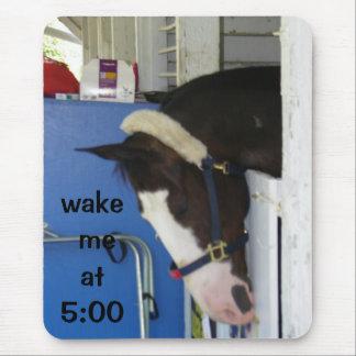 WAKE ME AT 5 SLEEPING HORSE MOUSE PAD