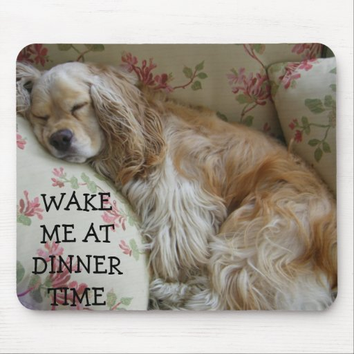 """""""WAKE ME AT DINNER TIME"""" MOUSE PAD"""