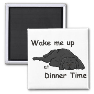 Wake Me Up At Dinner Time Magnet