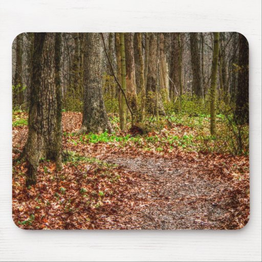 Wakening Forest Mouse Pad