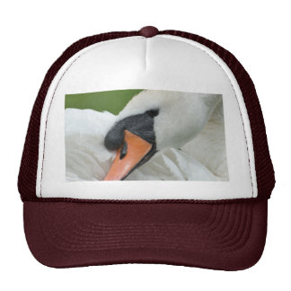 Waking swan hat
