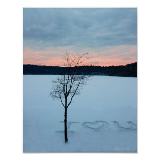 Walden Pond I Love U: Winter Love poster