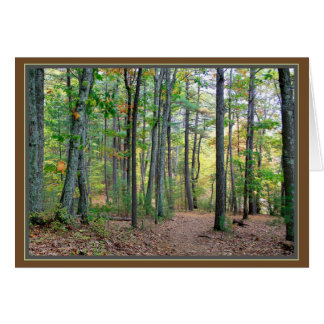 Walden Woods: A morning walk is a blessing Card