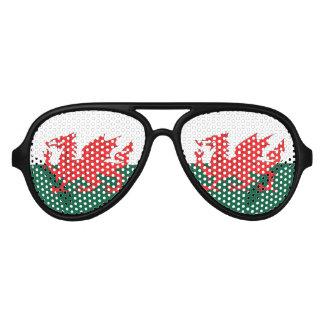 Wales Aviator Sunglasses