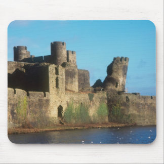 Wales - Caerphilly castle, with a view of the Mouse Mat