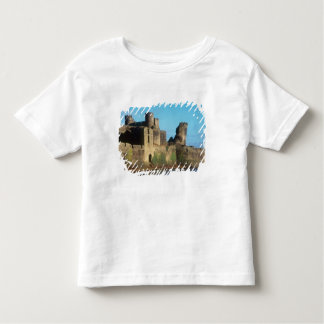Wales - Caerphilly castle, with a view of the Toddler T-Shirt