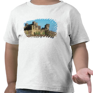 Wales - Caerphilly castle, with a view of the T-shirts