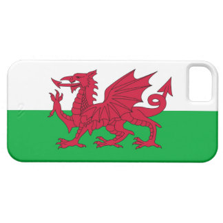 WALES CASE FOR THE iPhone 5