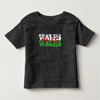 Wales - Colours of the Welsh Flag Toddler T-Shirt