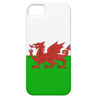 wales country dragon flag welsh british iPhone 5 cover