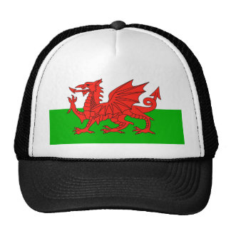 wales country flag british nation welsh symbol cap