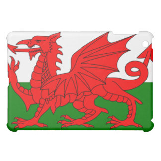Wales Flag  Cover For The iPad Mini