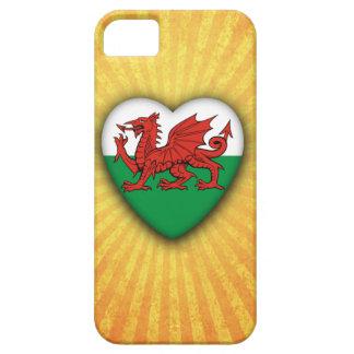 Wales Heart Flag on sunburst background iPhone 5 Cover