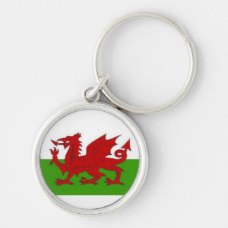 Wales-keychain Silver-Colored Round Key Ring