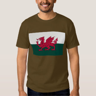 Wales Map and/or Flag T-shirt
