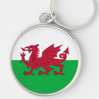 WALES Silver-Colored ROUND KEY RING