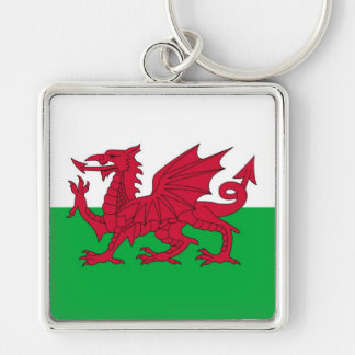 WALES Silver-Colored SQUARE KEY RING