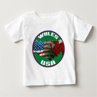 Wales USA Friendship Tshirts