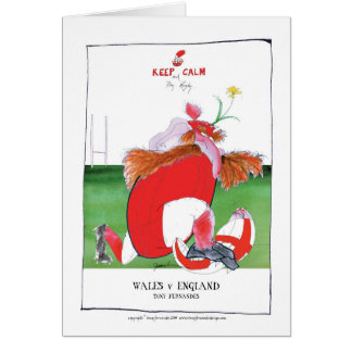 wales v england balls - from tony fernandes card