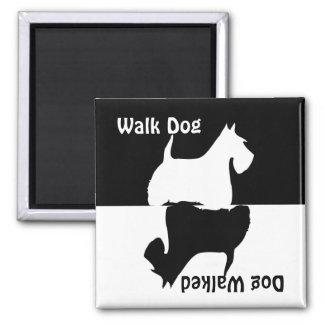 Walk dog, dog walked, scottish terrier dog magnet
