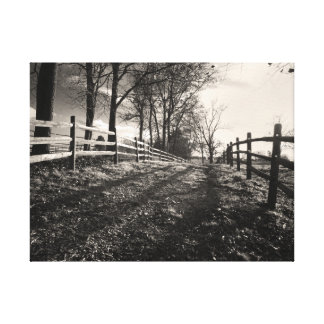 Walk Down a Country Path Photo in Black and White Canvas Print