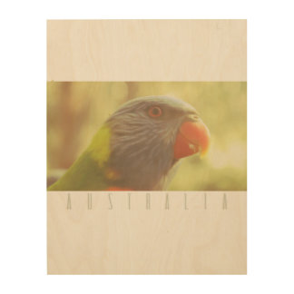 Walk In The Park, Australia Collection Wood Wall Art